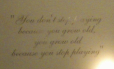 You don't stop playing because you grow old, you grow old because you stop playing